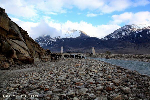 North Sikkim 7